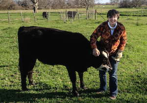 Dr. Smith with a cow