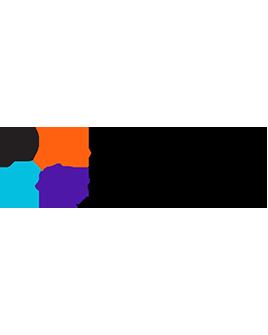 PMI Icon