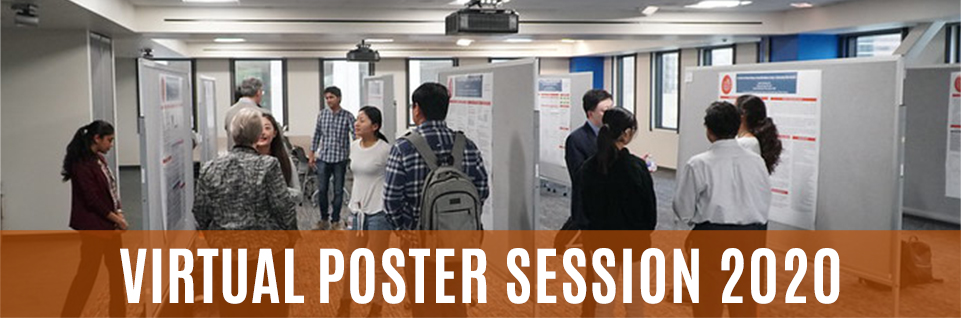 Virtual Poster Session 2020
